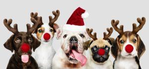 ausgefallene weihnachtsgeschenke für kunden